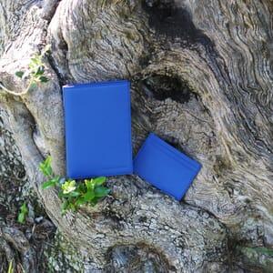 vue portee porte-cartes cuir bleu