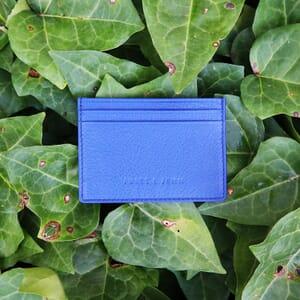 vue posee porte-cartes cuir bleu
