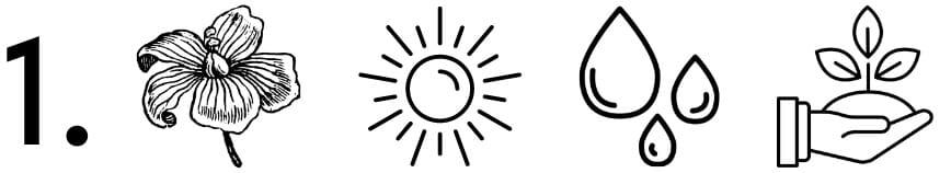 icones-recolte-du-lin